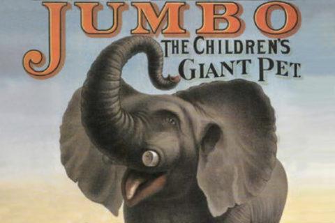 Jumbo, éléphant star et martyr du cirque