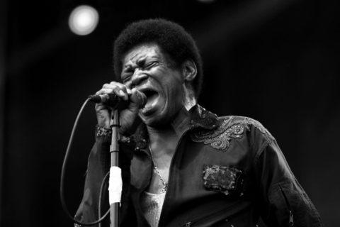 Charles Bradley, la voix de la Soul