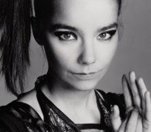 Björk réédite toute sa discographie en cassettes